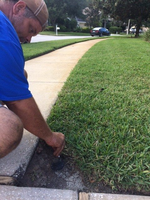 sprinkler repair tampa bay near me