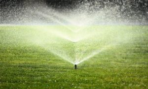 Overview of Automatic Sprinkler Systems